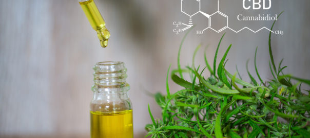 Thoughtful Brands Shares Exactly What to Look for When Choosing a CBD Oil